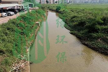 四会某河流水体治理工程